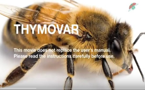 thymovar_youtube